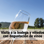 Visita a la bodega y viñedos con degustación de vinos
