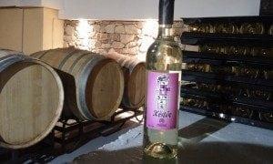Vino Blanco Xènia 2015
