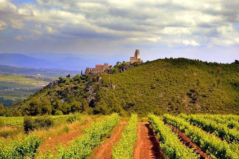 Ruta del Alto Penedés (Vilafranca del Penedés, Sant Sadurní d´Anoia y alrededores)