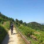 Ruta en bicicleta eléctrica y comida en bodega