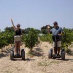 Tour Segways entre viñas y curso de cata