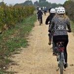 Cheque regalo ruta libre en bici + cata de vinos
