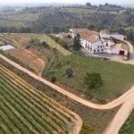 Cheque regalo curso viticultura enología y cata