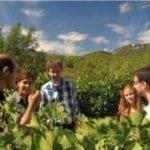 PB-Winetourism-Penedes-Tour-01-300x199