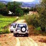 PB-Winetourism-Terroir-Tour-Experience-boost-300x199