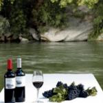 Visita con picnic a orillas del río Ebro