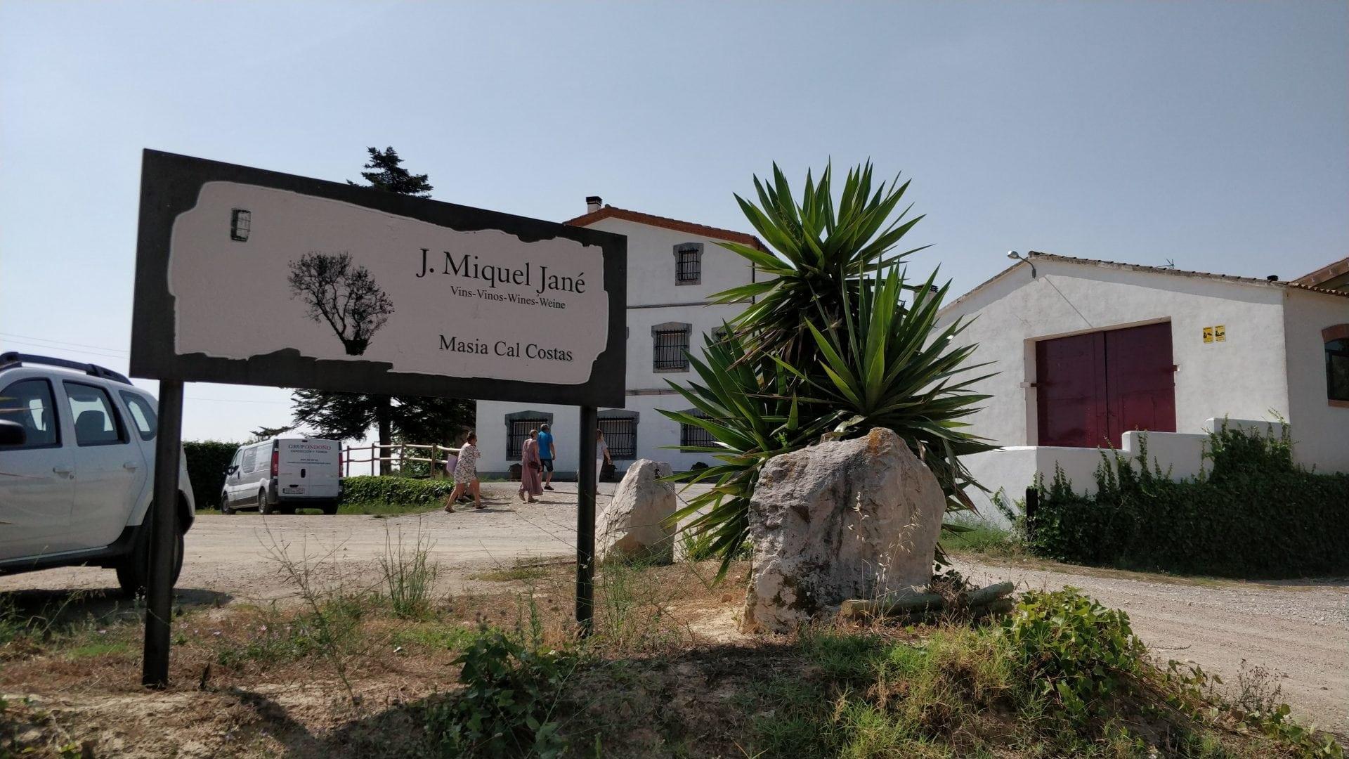 Visitamos Miquel Jané – Curso de viticultura enología y cata
