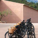 Ruta libre con bicicleta eléctrica